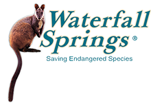 Waterfall Springs Wildlife Sanctuary